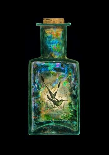 Hummingbird Nebula