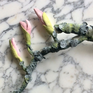 Blossoms on a Branch