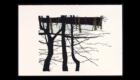 Winter On Loomis Brook