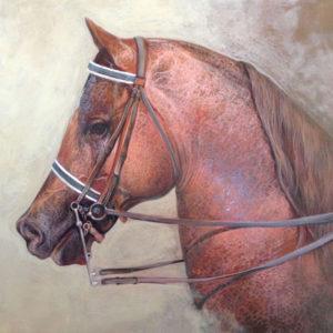 Frank Anthony, Horse 2016