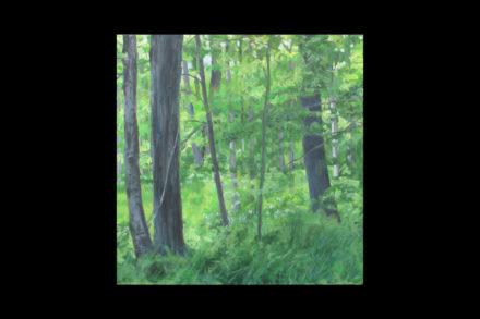 """Spring"" (Oil on wood panel. 12″x12″)"