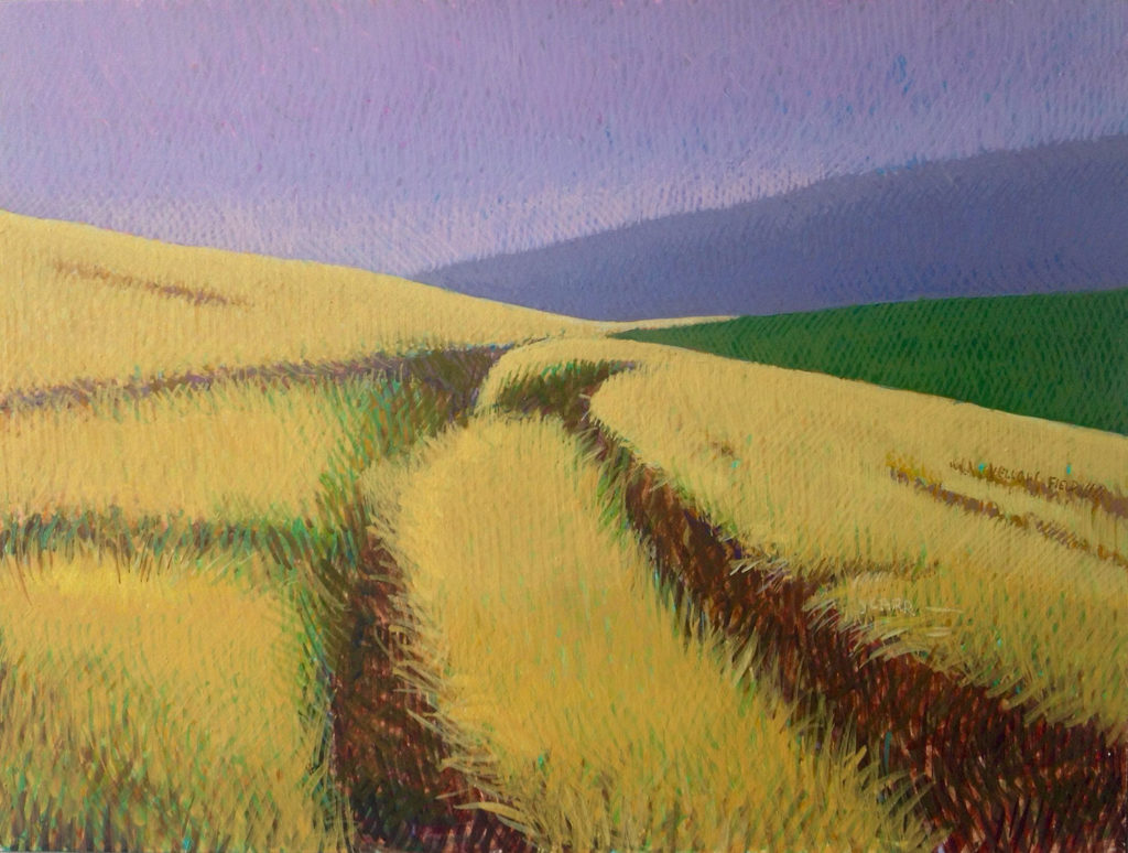 Yellow Field by Jane Carr