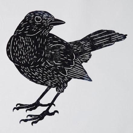 Catbird by Ondine Crispin