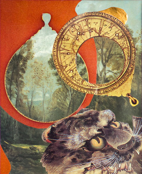 Tiger and Astrolabe by Margot Farrington