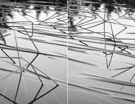 Bent Reeds diptych by Drew Harty