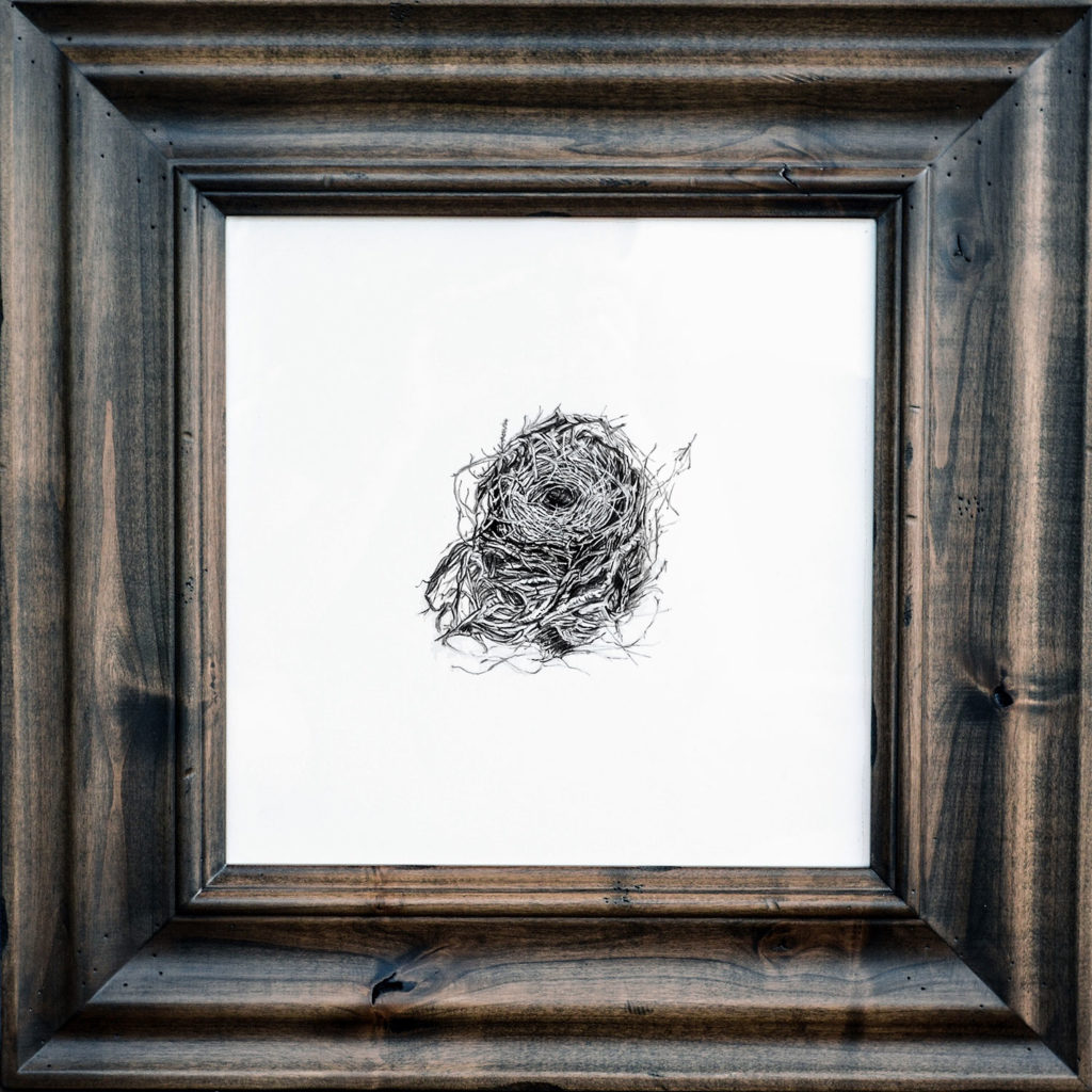 Nest Portrait by Lynn Johnson
