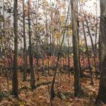 Woods in Fall, Nelsonville NY by Lauren Wallis Hall