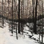 Woods in Winter, Nelsonville NY by Lauren Wallis Hall